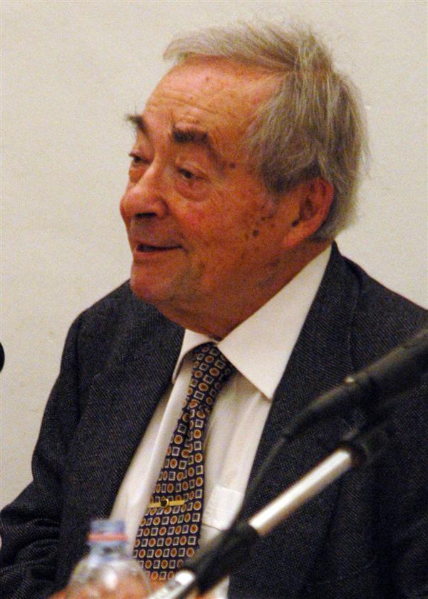 george Steiner (Custom)