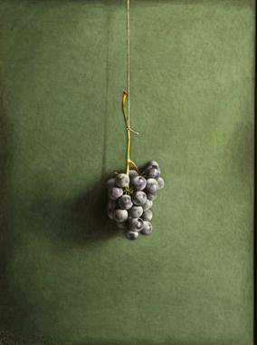 27 Uva americana, 2003, olio su tavola incamottata, cm. 40x30